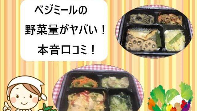 ヨシケイ|ベジミールの野菜量がヤバイ!【実際に食べた本音口コミ!】