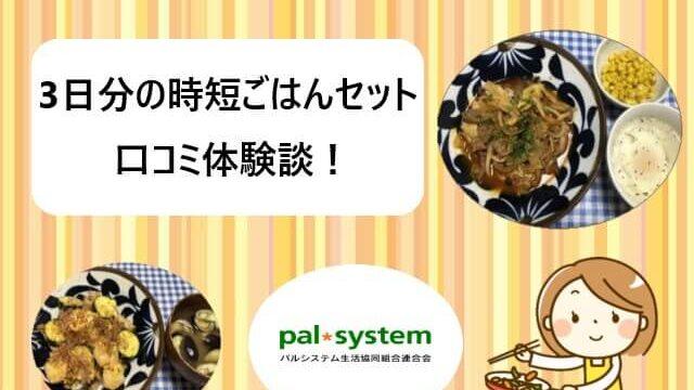 パルシステム|3日分の時短ごはんセットの口コミ体験談【動画あり】
